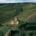 Ho scoperto i locali selezionati dal Chianti Classico, ecco dove bere uno dei migliori vini al mondo in Toscana | 2night Eventi