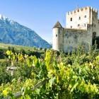I migliori produttori di vino italiani al Merano Wine Festival 2016 | 2night Eventi Bolzano