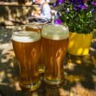 Birra all'aperto? Non perdere i migliori pub con giardino del Veneto | 2night Eventi Venezia
