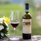Wine Tasting con i Vini Frescobaldi e Cicchetti Gourmet al Danieli Bistro | 2night Eventi Venezia