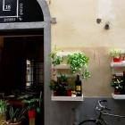 Al Casella 18 torna la cena degustazione il Gioco dell'Oca, Cibo, Vino e Imprevisti | 2night Eventi Firenze