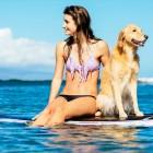 40 spiagge dog friendly e 3 tratti di spiaggia libera per un'estate a tutto bau! | 2night Eventi Pescara