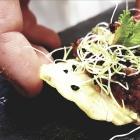 Wow effect assicurato per le 40 ricette in semifinale con Scatena l'aperitivo con Rustica - Nord Italia | 2night Eventi