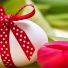 La Pasqua allo Zibò Bistrò | 2night Eventi Verona