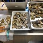 AperiFish: l'aperitivo con specialità di mare da Fracca Food | 2night Eventi Verona