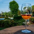 A luglio da Al Sile arriva l'aperitivo nel verde: VerdeSile | 2night Eventi Treviso