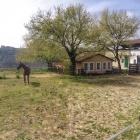 Passeggiata e dimostrazioni equestri alla Tenuta Resort Agricolo | 2night Eventi Rieti