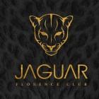 Riapre a Firenze il Jaguar Florence Club   2night Eventi Firenze