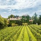 Il wine resort celo, manca? Eccone 7 di bellissimi perché la vendemmia è dietro l'angolo | 2night Eventi