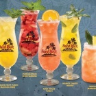 Infused With Love Cocktails all'Hard Rock Cafe Roma | 2night Eventi Roma