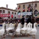 La Fiera de l'Oca e il Zogo de l'Oca in Piazza a Mirano | 2night Eventi Venezia