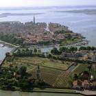 L'Oro di Venissa | 2night Eventi Venezia