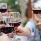 La tendenza sono i vini bio: tutto quello che devi sapere per andare sul sicuro tra i locali fiorentini | 2night Eventi Firenze