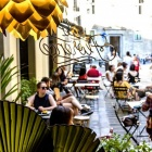 Vince il botanico nell'interior design: ecco i locali in stile a Firenze | 2night Eventi Firenze