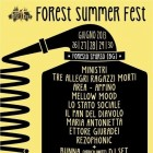 Forest Summer Fest 2013 | 2night Eventi Bergamo