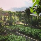 Ritorno alle origini: 4 locali della provincia di Treviso che utilizzano ingredienti a Km0 (e la salute ringrazia) | 2night Eventi Treviso