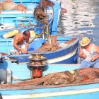 5 locali di Pozzuoli dove mangiare pesce e spendere poco | 2night Eventi Napoli