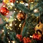 Il Pranzo di Natale al Twins' | 2night Eventi Barletta