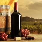 Brindiamo a Bacco...novembre è il tempo delle sagre del vino novello! | 2night Eventi Pescara