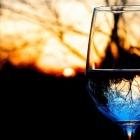 Tutti gli appuntamenti di luglio alla Vineria Sonora | 2night Eventi Firenze