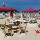 5 buoni motivi per scegliere di portare il tuo cane in spiaggia a Pescara! | 2night Eventi Pescara