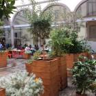La Sagra del senza glutine al Quinoa | 2night Eventi Firenze