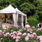 I giardini segreti di Firenze: quali visitare e dove andare a mangiare | 2night Eventi Firenze