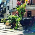 I brunch da fare quest'estate tra i locali di Treviso e dintorni | 2night Eventi Treviso