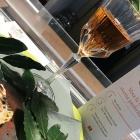 Scatena l'aperitivo con Rustica, i finalisti del Nord sono pronti per Baritalia Hub | 2night Eventi