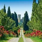 Masi in Rosa: la nuova degustazione di Masi Tenuta Canova   2night Eventi Verona
