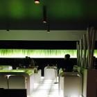 Cena allo Zushi, dove il sushi è fusion   2night Eventi Treviso