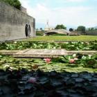 Nascosti all'ombra del sole di primavera: 6 luoghi che forse non tutti conoscono in provincia di Treviso | 2night Eventi Treviso