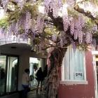 5 Locali insoliti a Mestre per svoltare dopo una giornataccia | 2night Eventi Venezia
