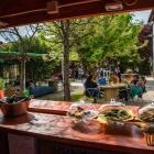 I ristoranti vegetariani e vegani a Padova e provincia se sei stanco della cucina veneta | 2night Eventi Padova