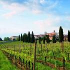 Le strade del vino e dei sapori in Lombardia | 2night Eventi Milano