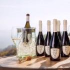 Qui degustazione: le cantine venete che tutti gli amanti del vino dovrebbero visitare almeno una volta | 2night Eventi Venezia