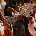 Concerti d'autunno, i mercoledi in musica a Napoli | 2night Eventi Napoli
