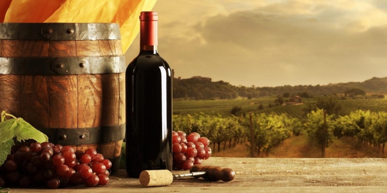 Risultati immagini per vino novello napoli da vivere