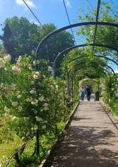 I Giardini Più Belli Di Firenze Per Una Romantica Passeggiata | 2night Eventi Firenze