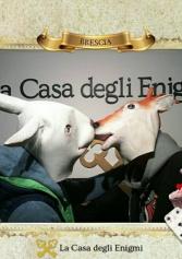 Martina Nel Paese Delle Meraviglie: La Mia Esperienza All'escape Room Di Brescia. | 2night Eventi Brescia