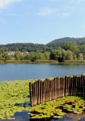 Picnic In Mezzo Al Verde: 10 Posti Da Non Perdere In Provincia Di Treviso | 2night Eventi Treviso