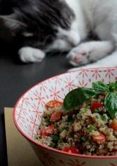 Il Locale Lo Vorrei Pet Friendly. Posti Diversi Dal Solito Dove Cani E Gatti Sono I Benvenuti | 2night Eventi
