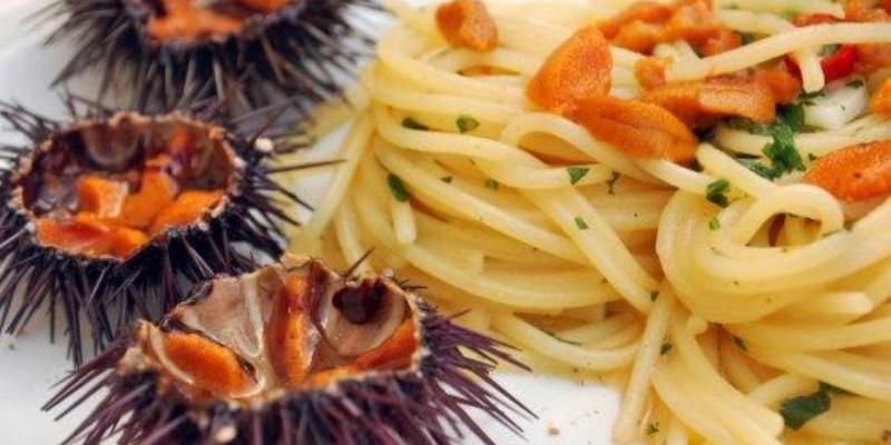 Ricci di mare: che bontà!! Dove mangiarli a Otranto, Castro e Gallipoli