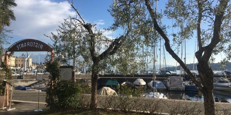 Gita di primavera: dove dormire e mangiare sul lago