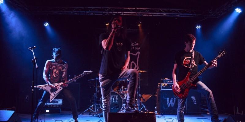 Cambia musica! 5 locali a Treviso e provincia per rockettari alternativi