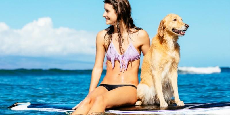 40 spiagge dog friendly e 3 tratti di spiaggia libera per un'estate a tutto bau!