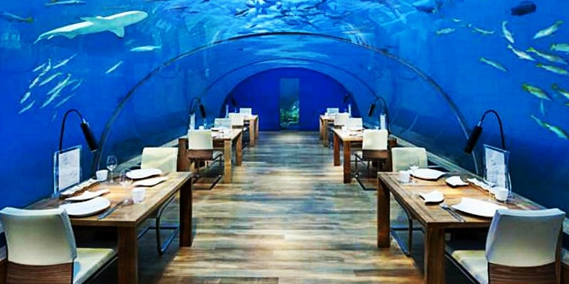 Su una roccia in mezzo al mare di Zanzibar o completamente al buio? Sono i 10 ristoranti più strani al mondo