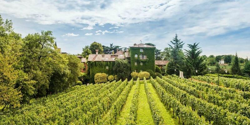 Il wine resort celo, manca? Eccone 7 di bellissimi per godersi la vendemmia