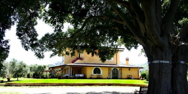 Primavera in Agriturismo: 5 consigli per un pranzo domenicale in Sabina