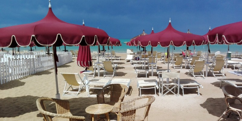5 buoni motivi per scegliere di portare il tuo cane in spiaggia a Pescara!